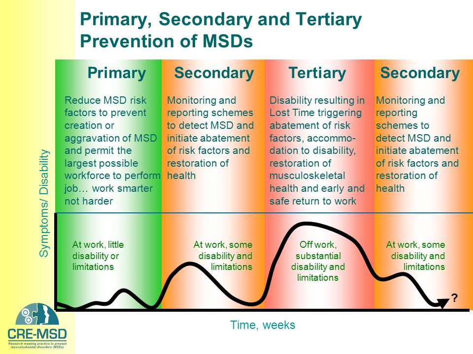 Time, weeks Symptoms/ Disability PrimarySecondaryTertiarySecondary Reduce MSD risk factors to prevent creation or aggravation of MSD and permit the la