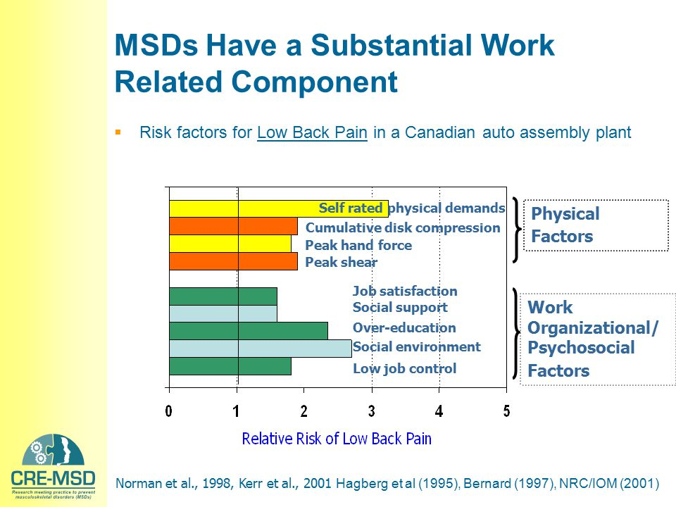Time, weeks Symptoms/ Disability PrimarySecondaryTertiarySecondary Reduce MSD risk factors to prevent creation or aggravation of MSD and permit the largest possible workforce to perform job… work smarter not harder Primary, Secondary and Tertiary Prevention of MSDs Monitoring and reporting schemes to detect MSD and initiate abatement of risk factors and restoration of health Disability resulting in Lost Time triggering abatement of risk factors, accommo- dation to disability, restoration of musculoskeletal health and early and safe return to work Monitoring and reporting schemes to detect MSD and initiate abatement of risk factors and restoration of health At work, little disability or limitations At work, some disability and limitations Off work, substantial disability and limitations At work, some disability and limitations ?