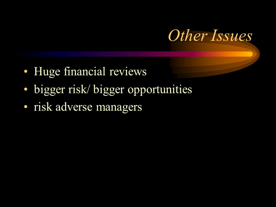 Other Issues Huge financial reviews bigger risk/ bigger opportunities risk adverse managers