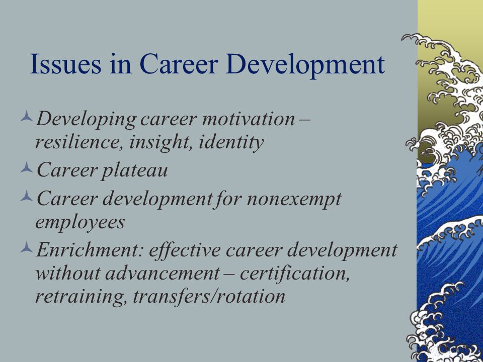 Issues in Career Development Developing career motivation – resilience, insight, identity Career plateau Career development for nonexempt employees En