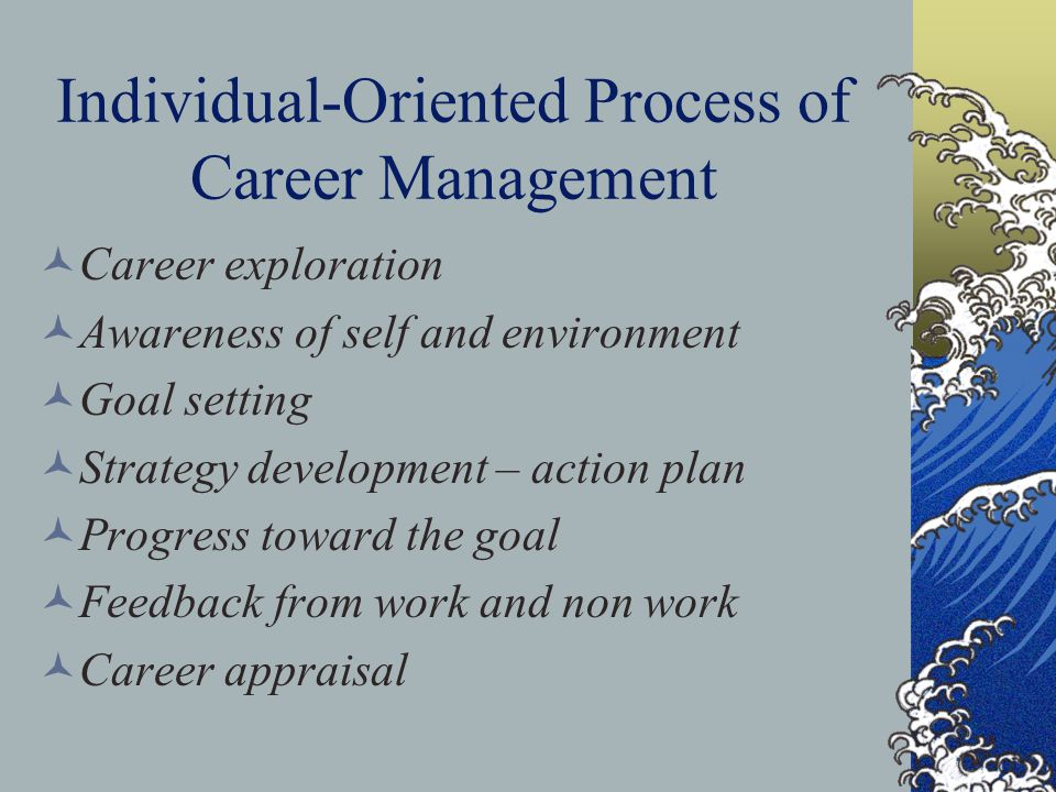 Individual-Oriented Process of Career Management Career exploration Awareness of self and environment Goal setting Strategy development – action plan