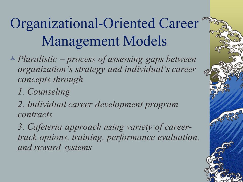 Systems View of Career Management People system – selecting, nurturing, motivating Job market system – developmental, opportunities Management and information systems – facilitate exchange of people, ideas, and information and links together,