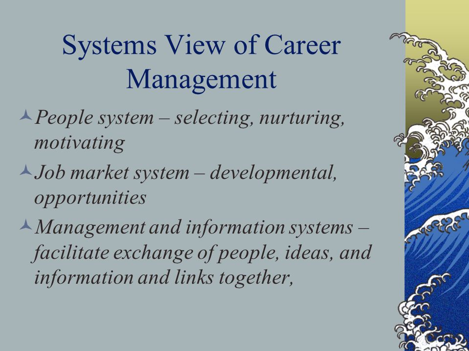 Systems View of Career Management People system – selecting, nurturing, motivating Job market system – developmental, opportunities Management and inf