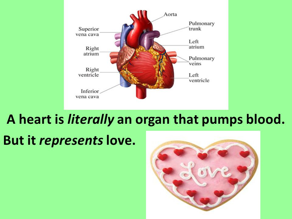 A heart is literally an organ that pumps blood. But it represents love.