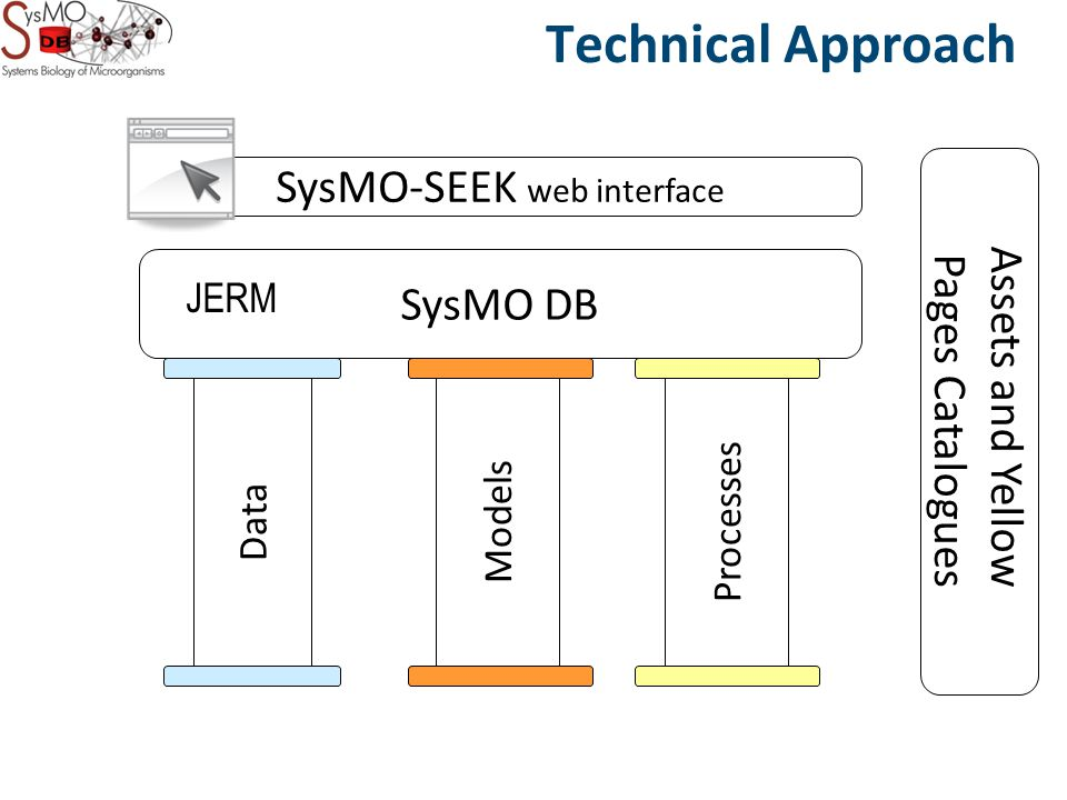 Data Models Processes SysMO DB Technical Approach SysMO-SEEK web interface Assets and Yellow Pages Catalogues JERM