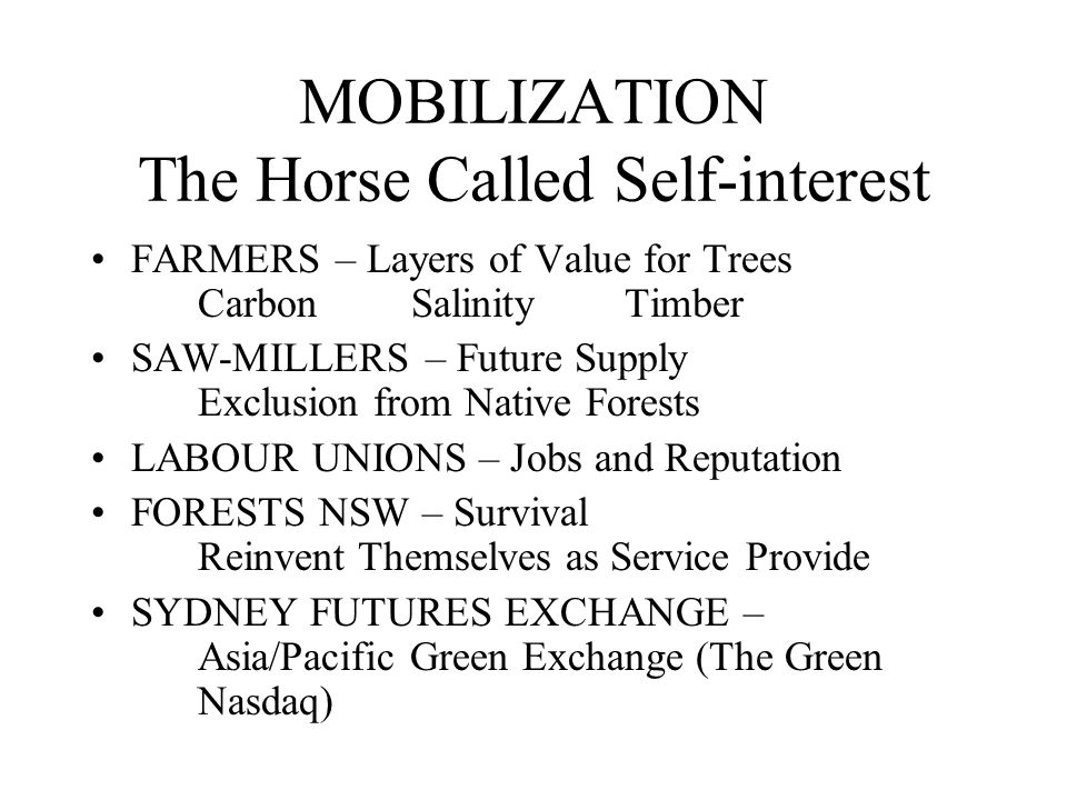 MOBILIZATION The Horse Called Self-interest FARMERS – Layers of Value for Trees CarbonSalinityTimber SAW-MILLERS – Future Supply Exclusion from Native Forests LABOUR UNIONS – Jobs and Reputation FORESTS NSW – Survival Reinvent Themselves as Service Provide SYDNEY FUTURES EXCHANGE – Asia/Pacific Green Exchange (The Green Nasdaq)