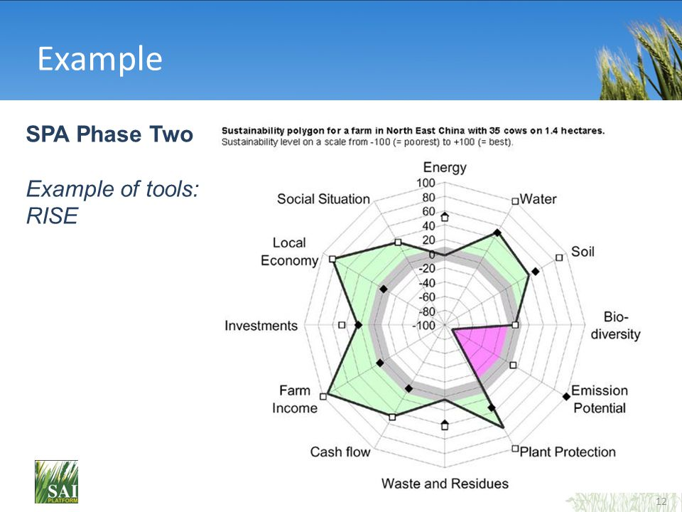 12 Example SPA Phase Two Example of tools: RISE
