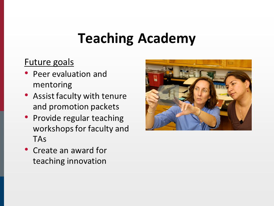 Teaching Academy Future goals Peer evaluation and mentoring Assist faculty with tenure and promotion packets Provide regular teaching workshops for faculty and TAs Create an award for teaching innovation