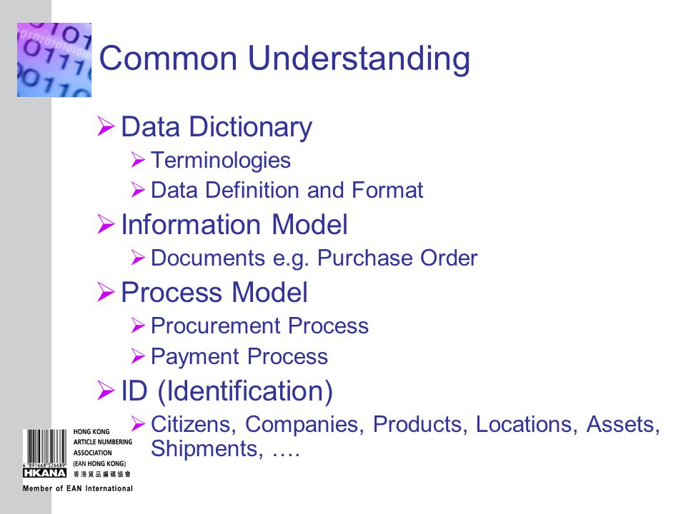 INSERT GRAPHIC SQUARE HERE Common Understanding  Data Dictionary  Terminologies  Data Definition and Format  Information Model  Documents e.g.