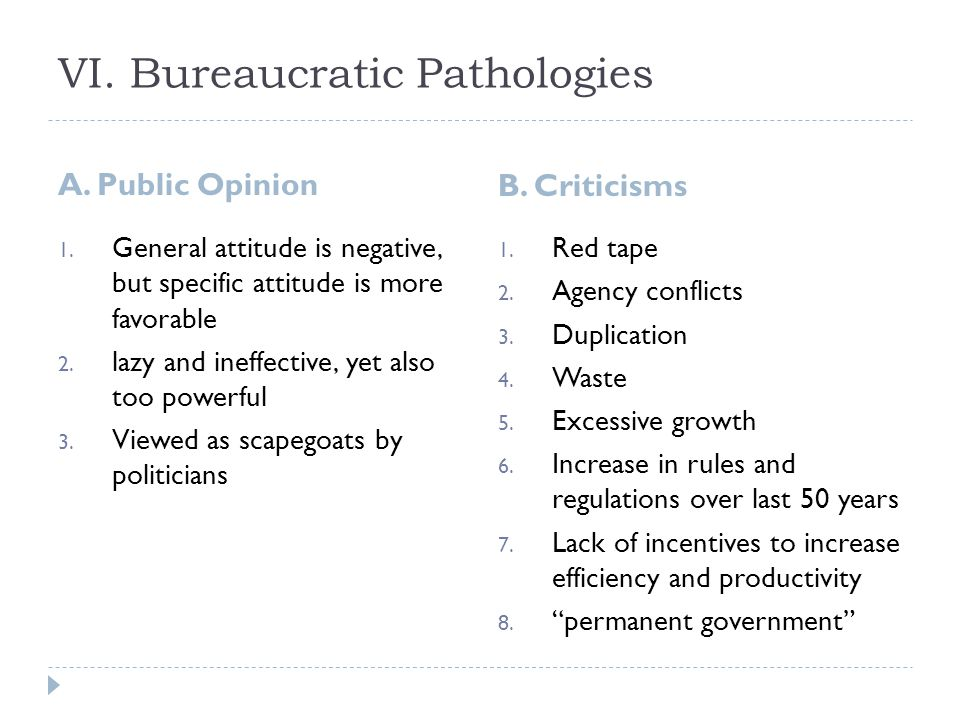 VI. Bureaucratic Pathologies A. Public Opinion B.