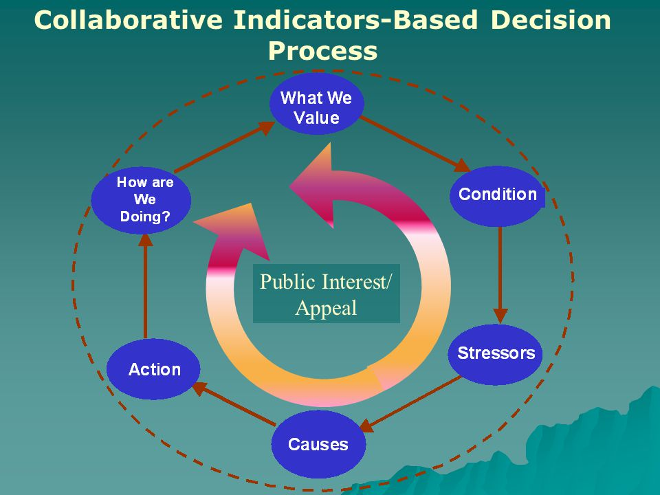Collaborative Indicators-Based Decision Process Public Interest/ Appeal