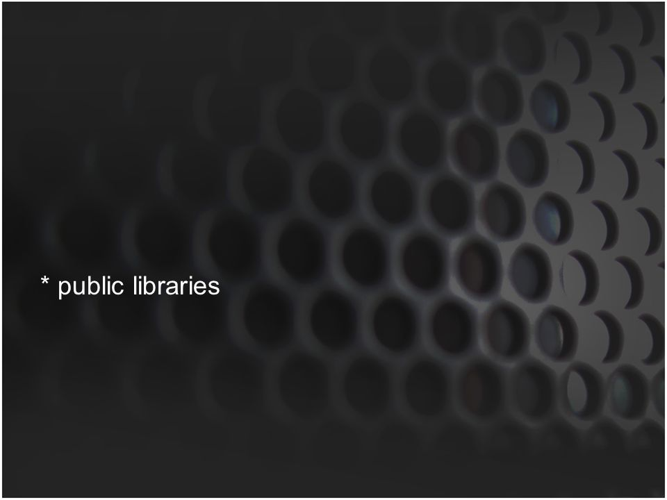* public libraries