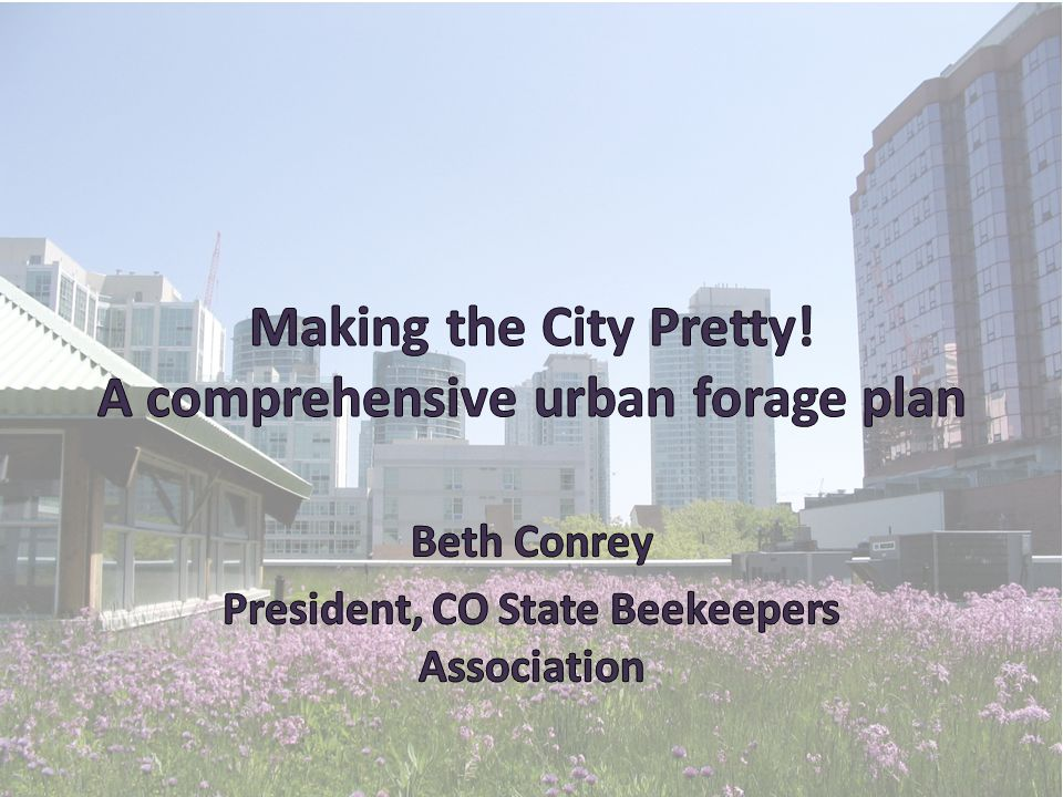 Why Urban Forage.Transportation Solutions Sell the Benefits.