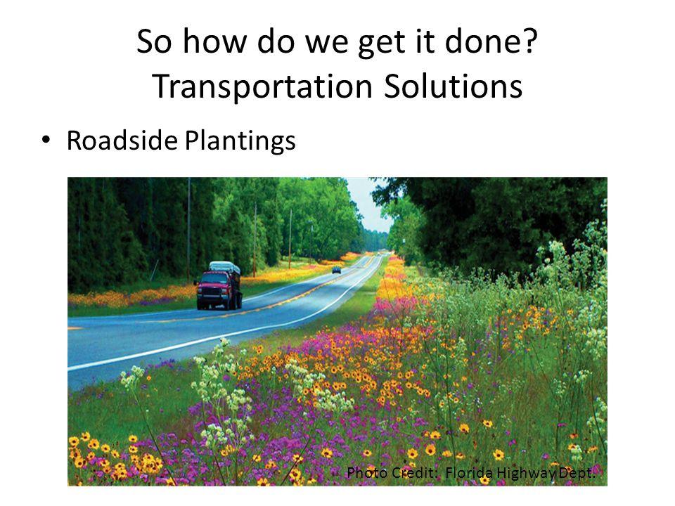 So how do we get it done? Transportation Solutions Roadside Plantings Photo Credit: Florida Highway Dept.