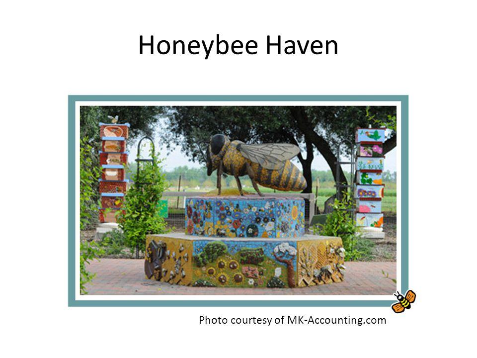Honeybee Haven Photo courtesy of MK-Accounting.com