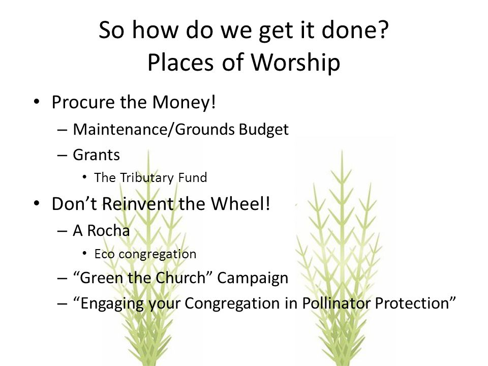 So how do we get it done? Places of Worship Procure the Money! – Maintenance/Grounds Budget – Grants The Tributary Fund Don't Reinvent the Wheel! – A