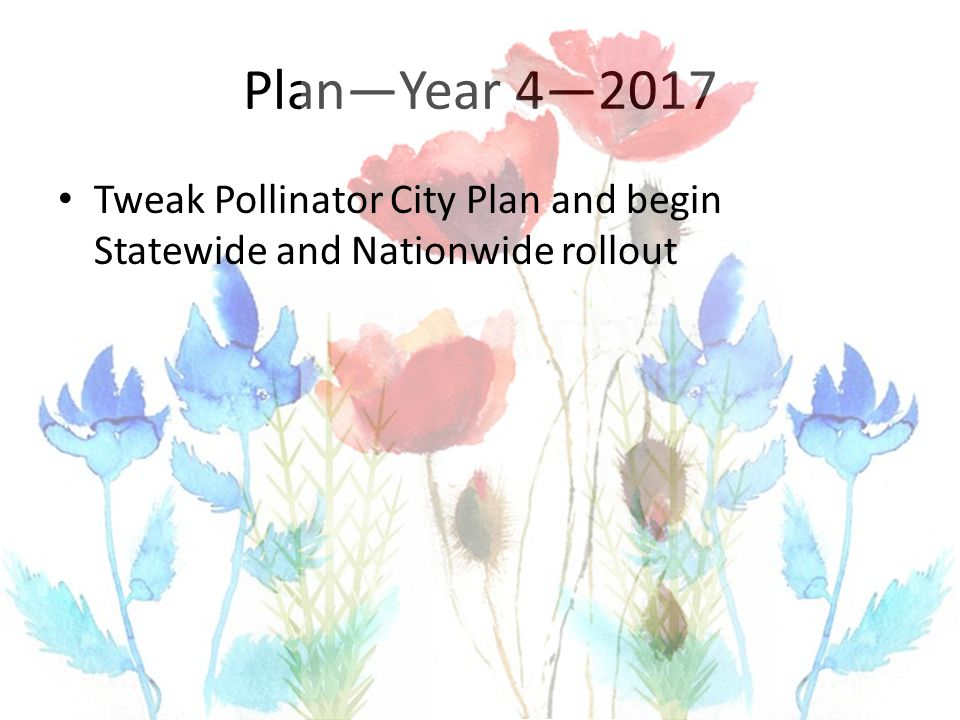 Plan—Year 4—2017 Tweak Pollinator City Plan and begin Statewide and Nationwide rollout