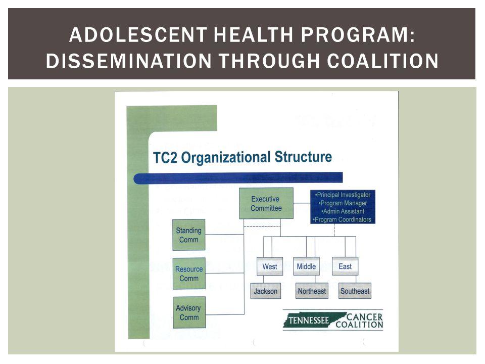 ADOLESCENT HEALTH PROGRAM: DISSEMINATION THROUGH COALITION