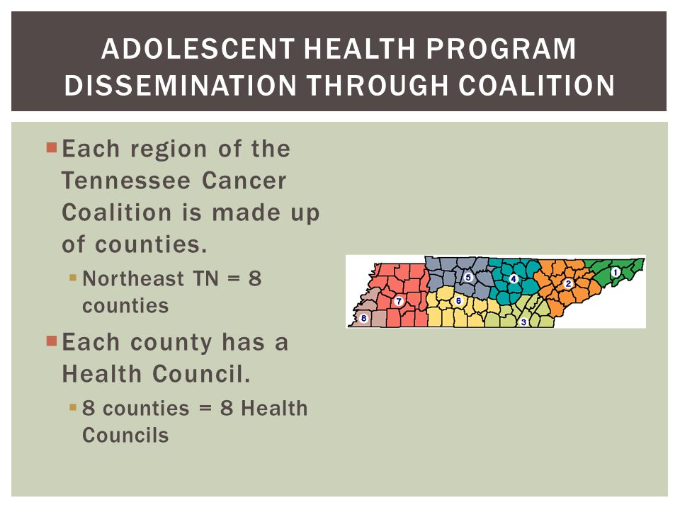  Each region of the Tennessee Cancer Coalition is made up of counties.  Northeast TN = 8 counties  Each county has a Health Council.  8 counties =