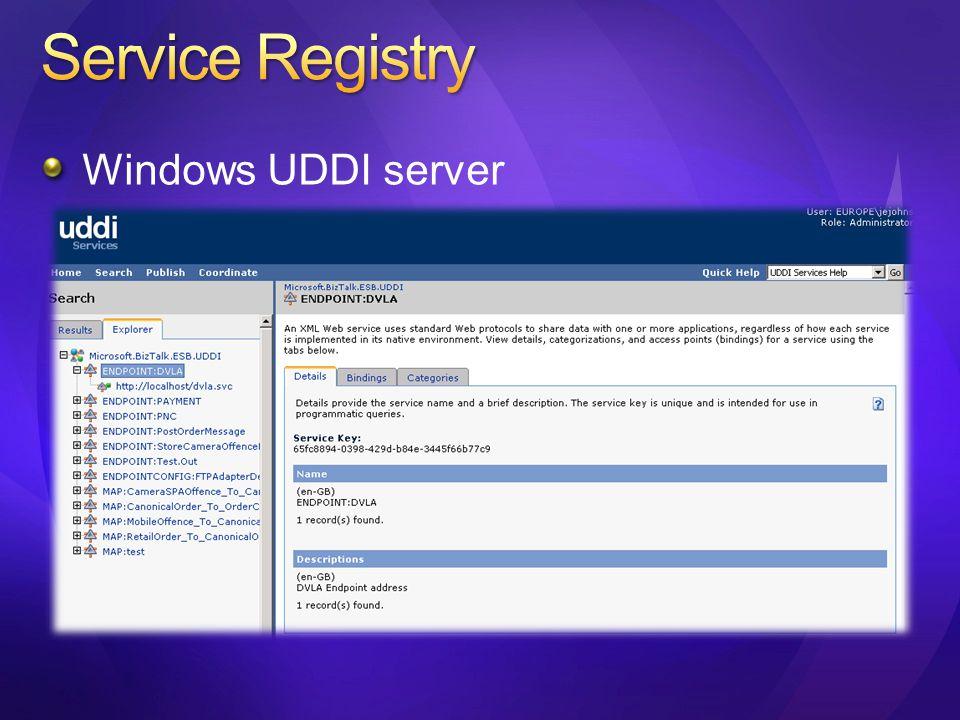 Windows UDDI server
