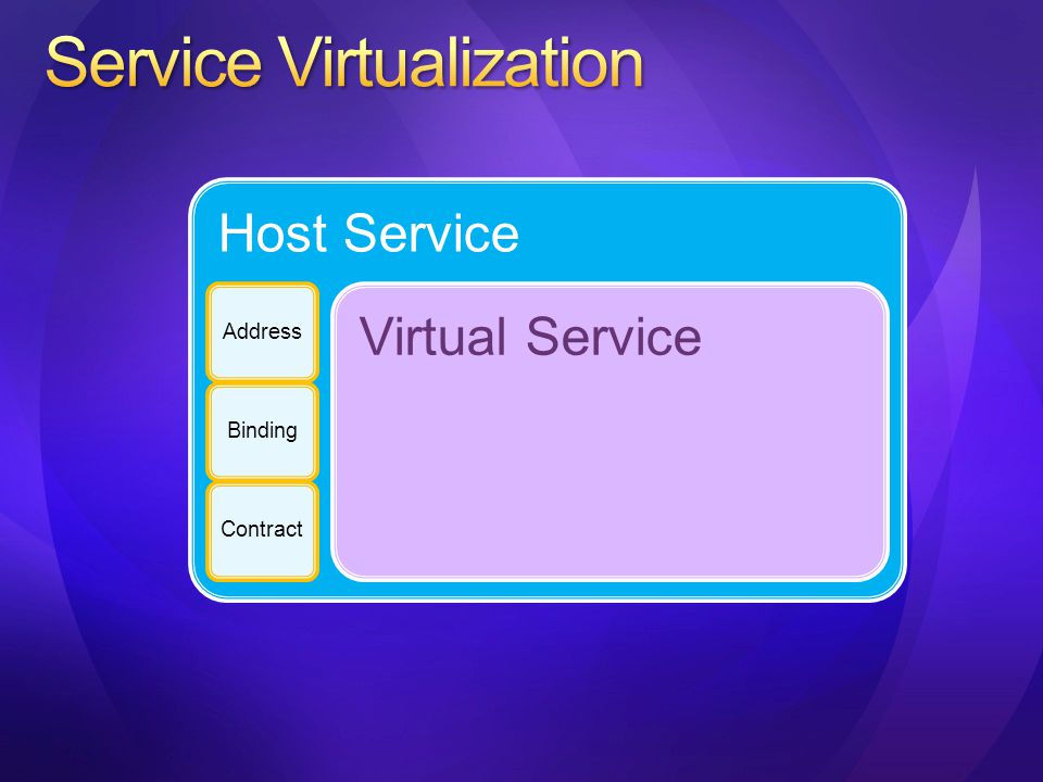Host Service AddressBindingContract Virtual Service