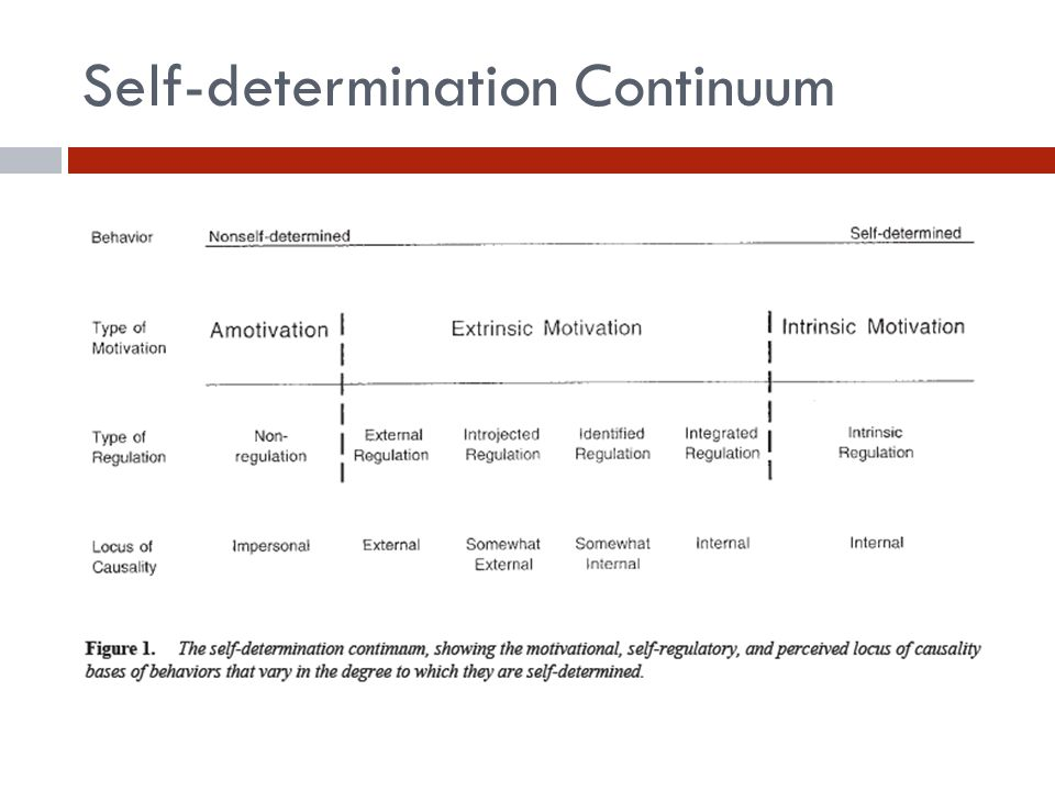 Self-determination Continuum