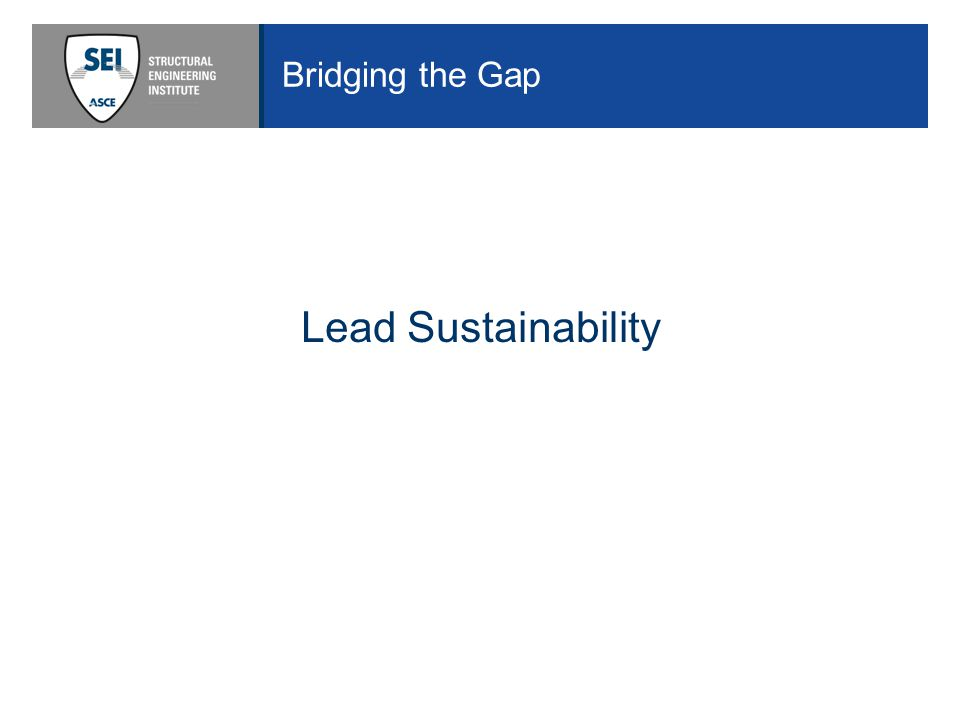Bridging the Gap Lead Sustainability
