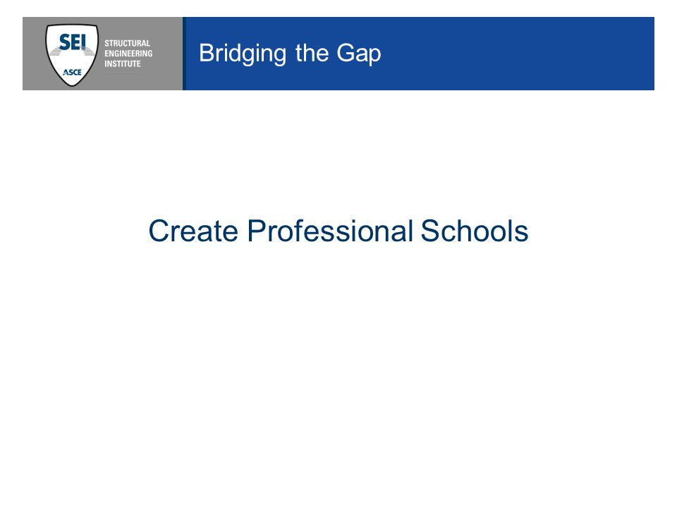 Bridging the Gap Create Professional Schools