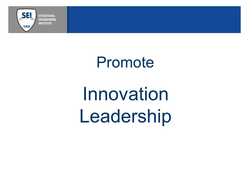 Innovation Leadership Promote