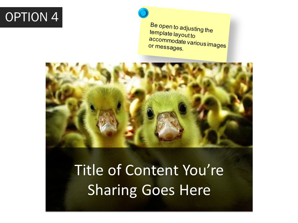 Title of Content You're Sharing Goes Here OPTION 4 Be open to adjusting the template layout to accommodate various images or messages.
