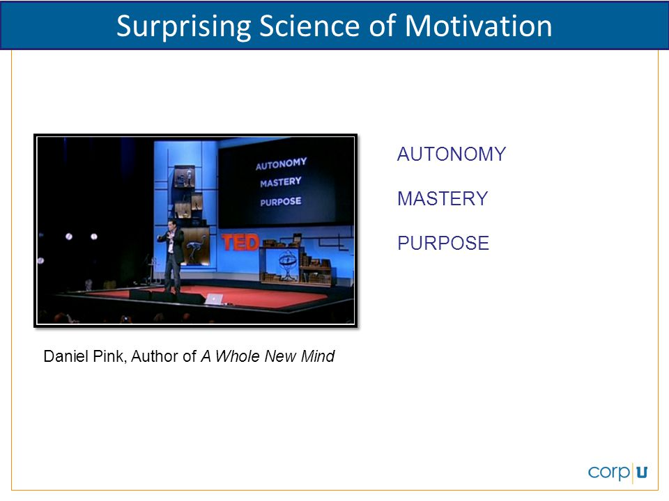 Daniel Pink, Author of A Whole New Mind AUTONOMY MASTERY PURPOSE Surprising Science of Motivation