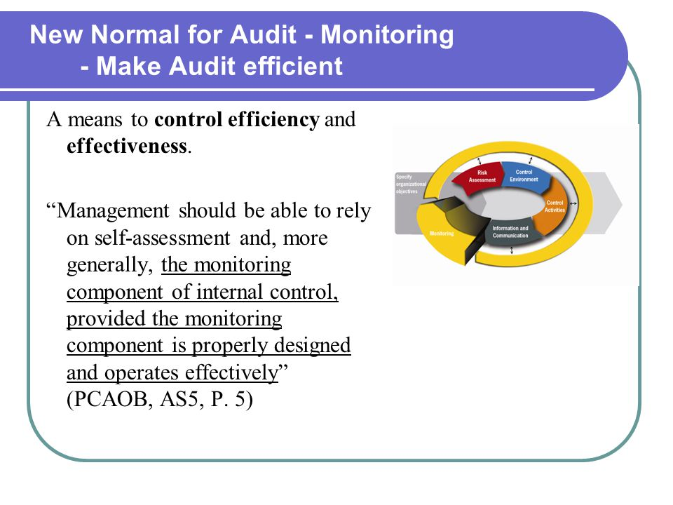 New Normal for Audit - Monitoring - Make Audit efficient A means to control efficiency and effectiveness.