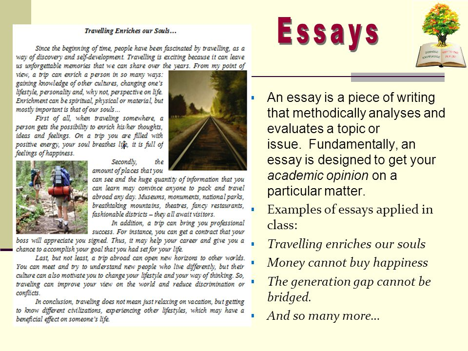  An essay is a piece of writing that methodically analyses and evaluates a topic or issue.