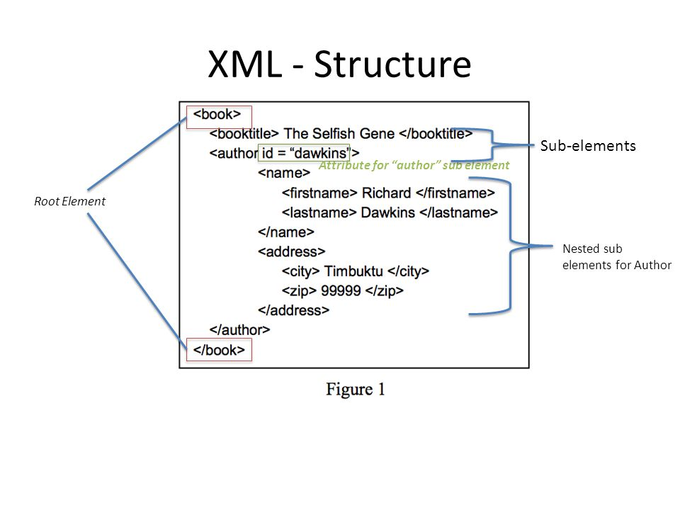 """XML - Structure Root Element Attribute for """"author"""" sub element Sub-elements Nested sub elements for Author"""