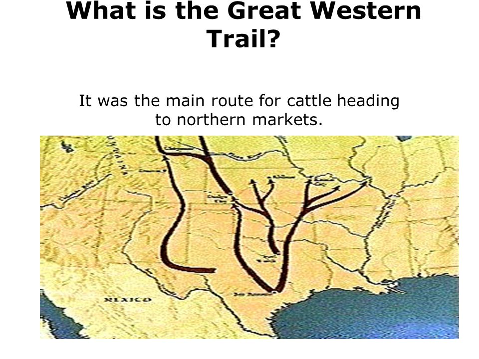 What is the Great Western Trail? It was the main route for cattle heading to northern markets.