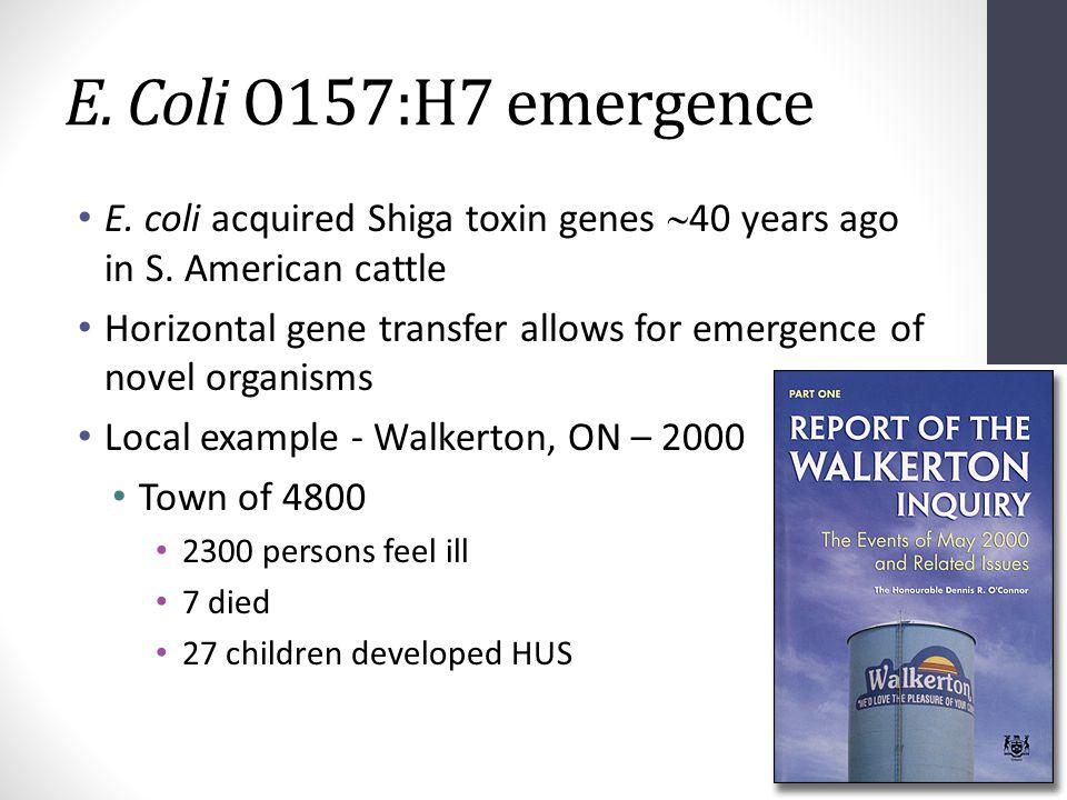 E. Coli O157:H7 emergence E. coli acquired Shiga toxin genes  40 years ago in S. American cattle Horizontal gene transfer allows for emergence of nov