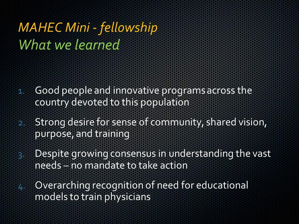 MAHEC Mini - fellowship What we learned 1.