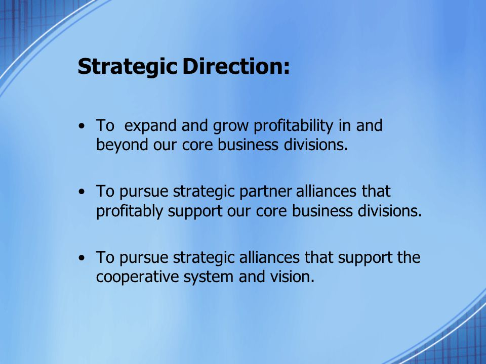 Strategic Direction: To expand and grow profitability in and beyond our core business divisions. To pursue strategic partner alliances that profitably