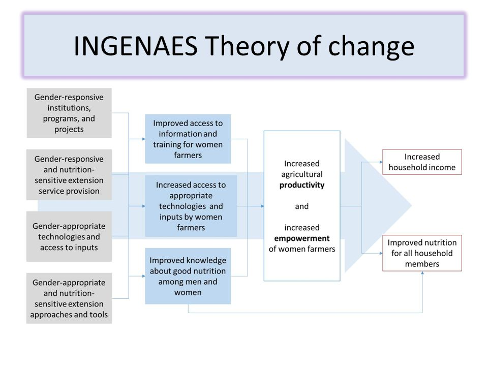INGENAES Theory of change