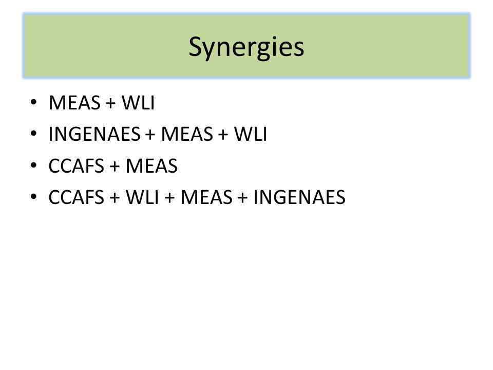 Synergies MEAS + WLI INGENAES + MEAS + WLI CCAFS + MEAS CCAFS + WLI + MEAS + INGENAES