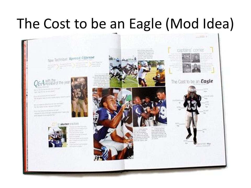 The Cost to be an Eagle (Mod Idea)
