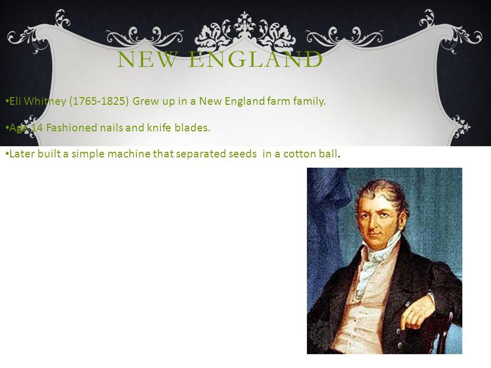 NEW ENGLAND Eli Whitney (1765-1825) Grew up in a New England farm family.