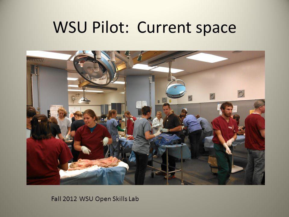 WSU Pilot: Current space Fall 2012 WSU Open Skills Lab