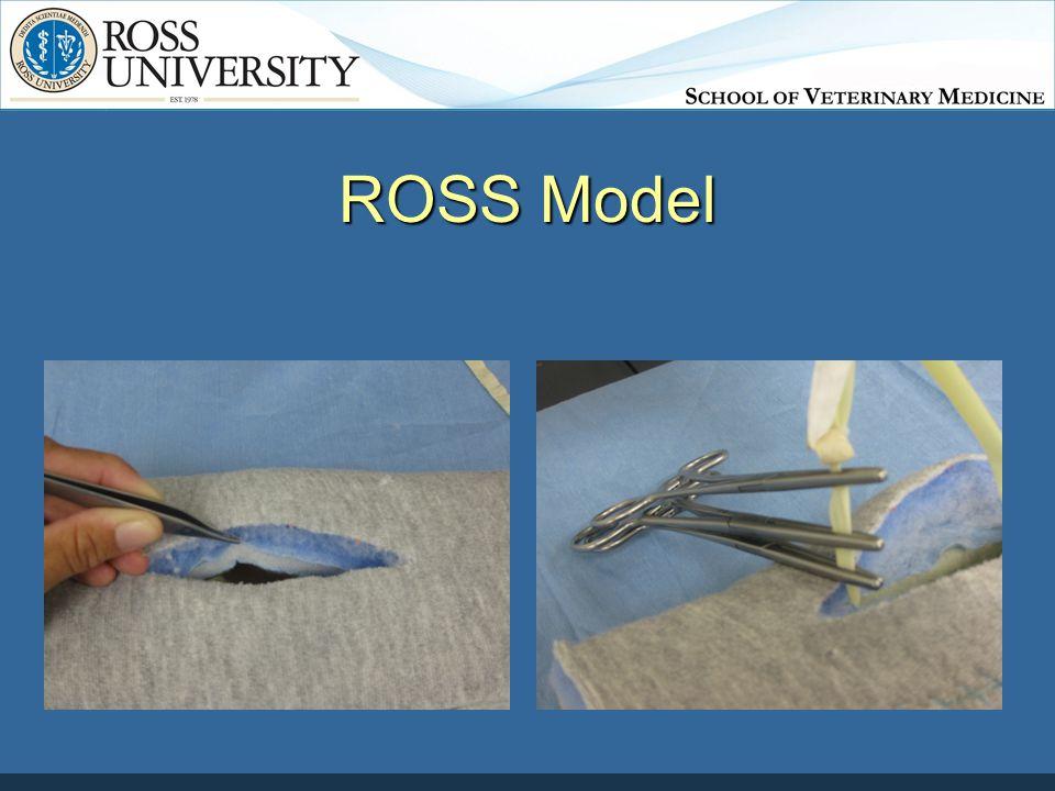 ROSS Model
