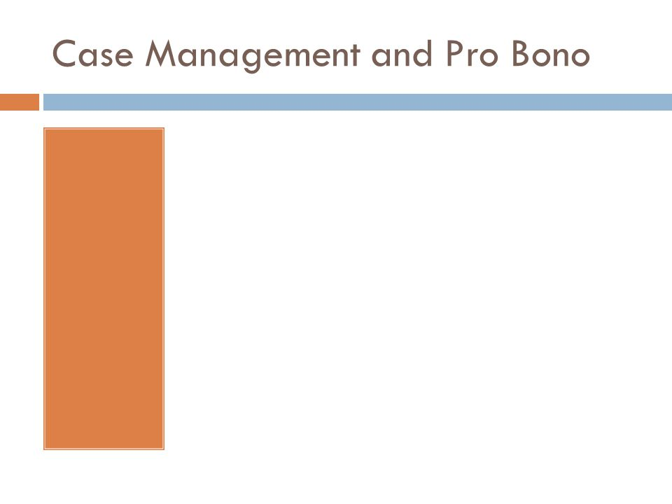Case Management and Pro Bono
