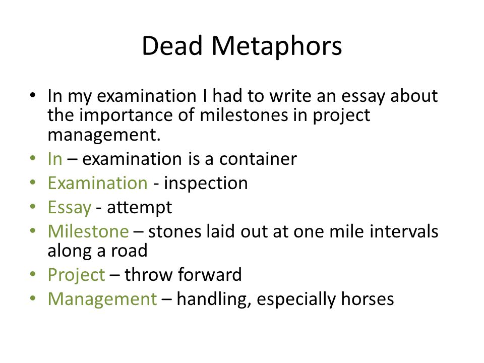 Dead Metaphors In my examination I had to write an essay about the importance of milestones in project management.