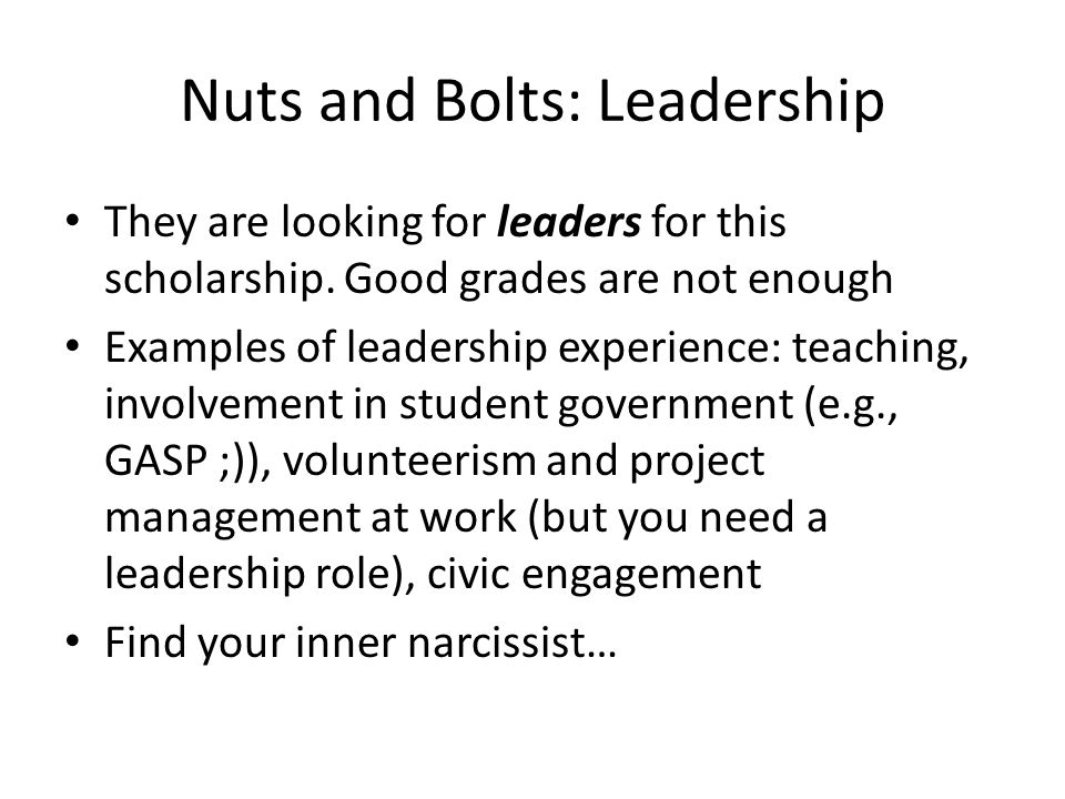 Nuts and Bolts: Leadership They are looking for leaders for this scholarship.