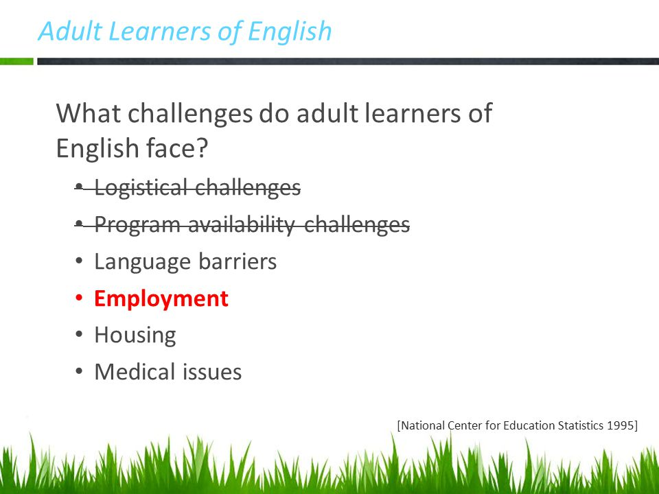 Adult Learners of English What challenges do adult learners of English face.