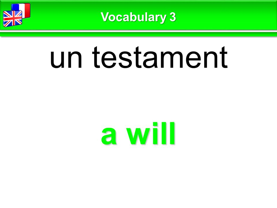 a will un testament Vocabulary 3