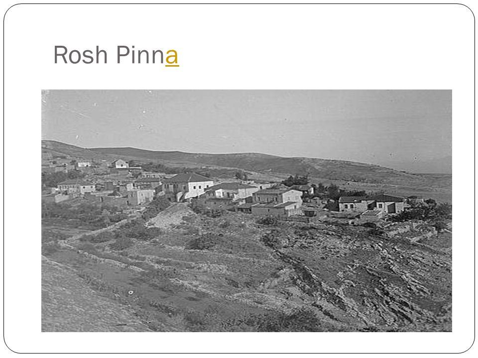 Rosh Pinnaa